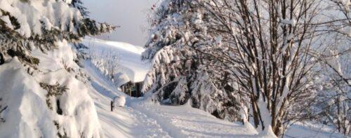Riassunto di un inverno: che bella la neve!